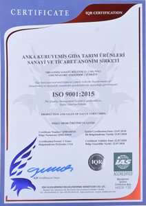 certificate-iso-9001-20199