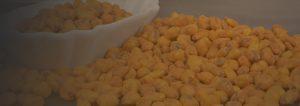 sauce-corn-with-cheese-bg